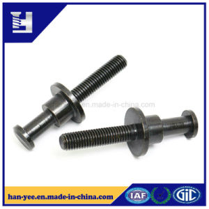 Black Round Step and Slotted Rivet Bolt pictures & photos