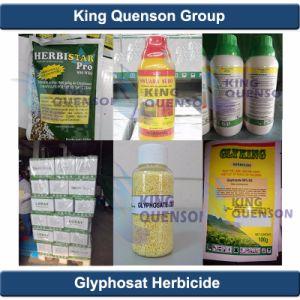 King Quenson Fao Glyphosate 95%Tc, Glyphosate 41%SL Glyphosate Weedicide pictures & photos
