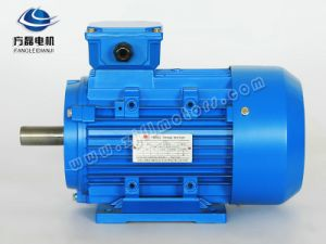 Ye2 5.5kw-4 High Efficiency Ie2 Asynchronous Induction AC Motor pictures & photos