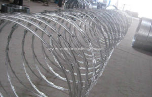 Bto-22 Galvanized Razor Wire, Cbt-65 Razor Wire pictures & photos