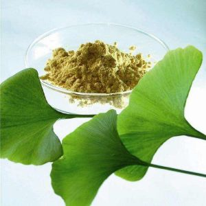 Ginkgo Biloba Extract for Food and Nutraceuticals pictures & photos