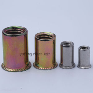 Steel Reduced Head Rivet Nut pictures & photos