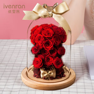 100% Natural Real Rose Flower in Glass for Valentine Birthday Gift pictures & photos