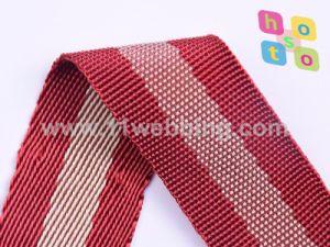 China Fake Nylon Polyester Webbing Manufacturer pictures & photos