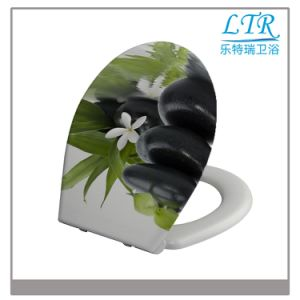 New Design Slow Close Printing Toilet Seat Cover pictures & photos