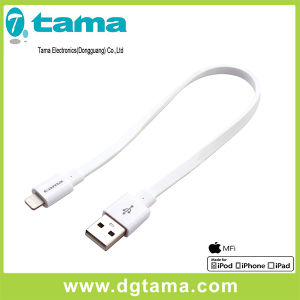 20cm USB Flat Cable with Lighting Connector for iPhone/iPad/iPod pictures & photos