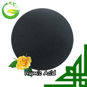 Organic Supreme Humic Acid 100 pictures & photos