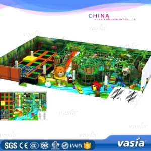 New Style Indoor Playground for Kids| (VS1-170219-376-30) pictures & photos