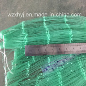 "0.66mm X 6 1/2"" X 25MD X 201yds Nylon Monofilament Fishing Nets pictures & photos"