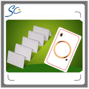 RFID Dual Frequency Hybrid Smart Card