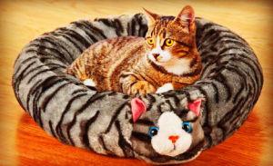 Short Plush Cat Bed pictures & photos