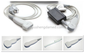 Portable Diagnostic Ultrasound Equipment with PC Platform (YSD1300) pictures & photos