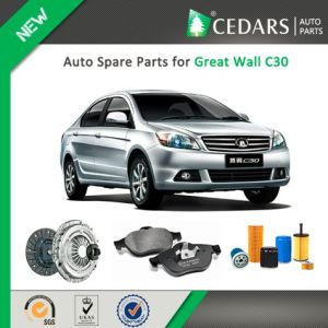 Chinese Auto Spare Parts for Great Wall C30 pictures & photos