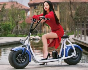 2016 Newest Citycoco 2 Wheel off Road Electric Bike for Adults