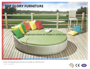 Outdoor Wicker Sun Lounge Rattan Sofabed (TGLU-09) pictures & photos