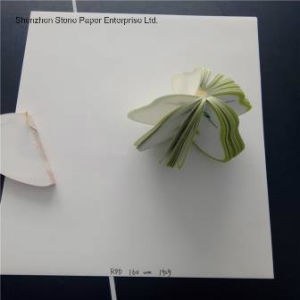Stone Paper (RPD-160) Rich Mineral Paper Double Coated-160um