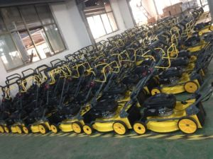 Walking Behind Hand Push Mulching Petrol/Gasoline Lawn Mowers/Lawnmowers Worldwide Use pictures & photos