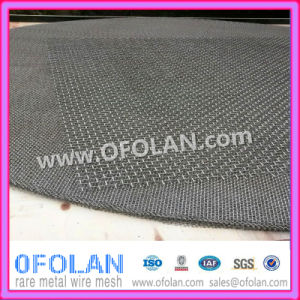 Military Quality Nickel Netting pictures & photos
