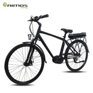 36V 250W MID Drive Mountain Electric Bike with All Suspension pictures & photos
