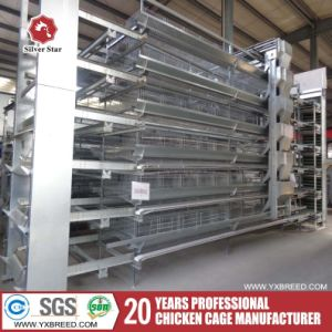 a and H Type Layer Chicken Cages Price for Sale pictures & photos