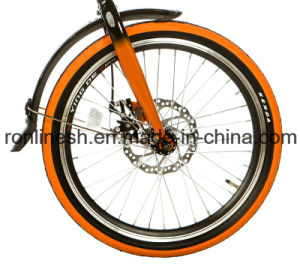 12kgs, Stylish 20in 6 Speeds Alloy Frame Folding Bike/ Bicycle/Compact Alluminum Bike/Folded Bicycle/Foldable Bike pictures & photos