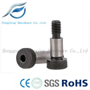 12.9 Socket Hex Head Shoulder Screw/Shoulder Bolt