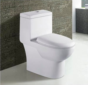 Hot Sale Bathroom Ceramic Washdown One Piece Toilet pictures & photos