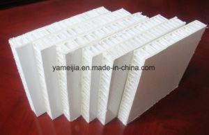 Gel Coated FRP PP Honeycomb Panels pictures & photos