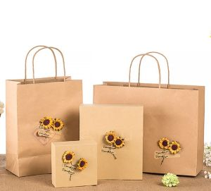 Fancy Offset Printing Custom Kraft Paper Gift Bag pictures & photos