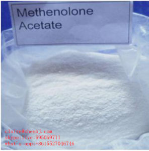 Methenolone Acetate (primobolan) pictures & photos