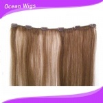 Wholesale Virgin Human Brazilian Clip in Hair Extensions for Black Women pictures & photos
