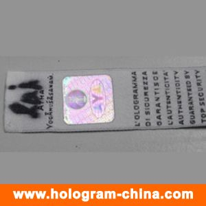 Anti-Counterfeiting 3D Laser Hologram Sticker for Cloth pictures & photos