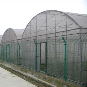 Agriculture Easily Installed Single Span Agricultural Film Green House pictures & photos