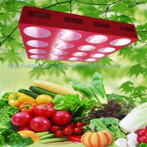 Full Spectrum Hydroponic Indoor Garden Plant 1200W LED Growlight pictures & photos