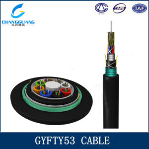 144 Core Stranded Loose Tube Non-Metalllic Strength Member Armored Cable GYFTY53 pictures & photos