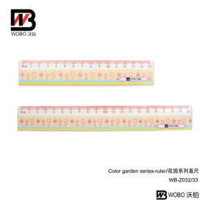2016 School and Office Stationery Plastic Ruler pictures & photos