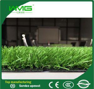 20mm Amusement Artificial Garden Grass pictures & photos