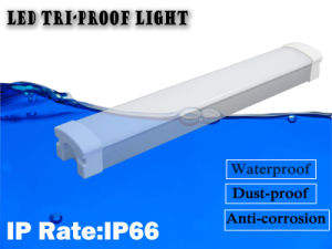 LED Tri-Proof Light with IP65  Waterproof Dustproof Anti-Corrosion pictures & photos