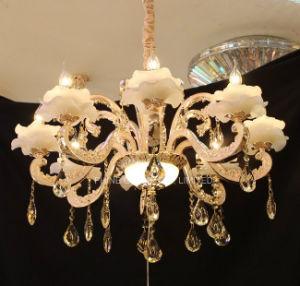 Phine European Decoration Interior Lighting with Zinc Alloy, Pendant Lamp pictures & photos