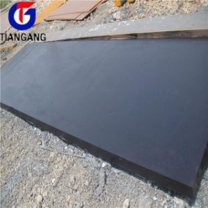 Colored Coated Steel Sheet pictures & photos
