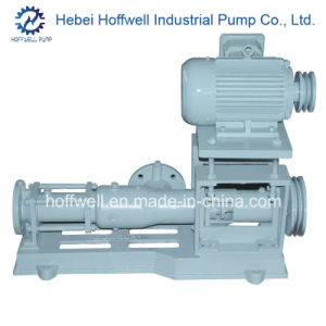 CE Approved G Series Single Screw Slurry Pump pictures & photos
