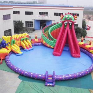 Inflatable Water Park for Kid and Adult (AQ3101) pictures & photos
