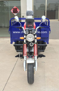 Tricycle with EEC Cert (TR-11) pictures & photos