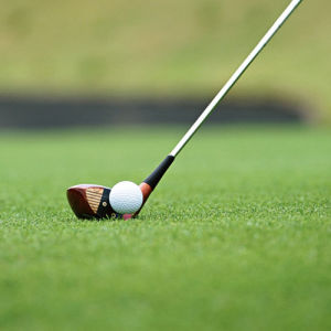 Green Grass for Golf Courses and Greens pictures & photos