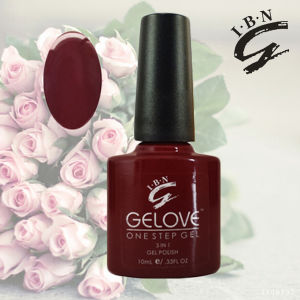 Ibn Top Selling Competitive Price One Step Gel Nail Polish pictures & photos