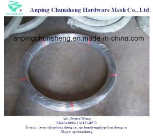 Wholesale Oval Gi Steel Wire pictures & photos