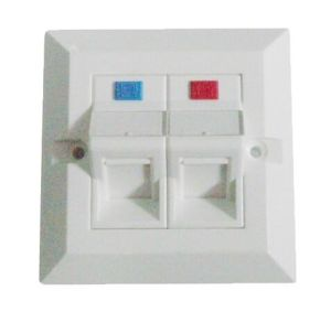 Dual Port Beveled Type Network UTP Cat5e CAT6 Wall Faceplate pictures & photos