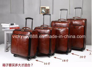 Cow Leather Wheeled Trolley Business Travel Luggage Suitcase Case (CY3567) pictures & photos