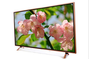 50 Inch LED TV for KTV with Explosion-Proof Function (H5201)