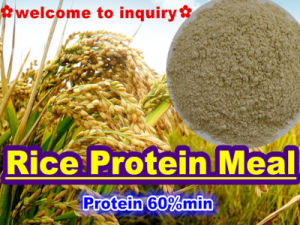 Rice Protein for Feed Protein (protein 60%min) pictures & photos